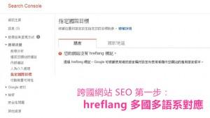 Google Search Console 指定國際目標 hreflang